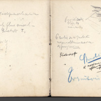 http://glangeaud.bu.uca.fr/archive/carnet-2800/carnet-2800_Page_36.jpg