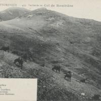 http://glangeaud.bu.uca.fr/archive/cartes-postales/GL-CP-131.jpg