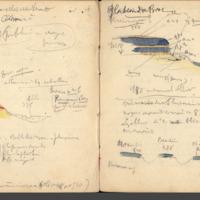 http://glangeaud.bu.uca.fr/archive/carnet-10/carnet-10_Page_37.jpg