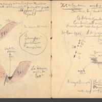 http://glangeaud.bu.uca.fr/archive/carnet-10/carnet-10_Page_48.jpg