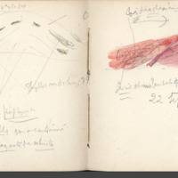 http://glangeaud.bu.uca.fr/archive/carnets/carnet-2400/carnet-2400_Page_47.jpg