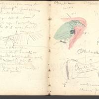 http://glangeaud.bu.uca.fr/archive/carnet-400/carnet-400_Page_27.jpg