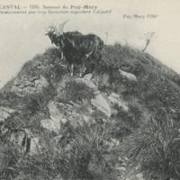 http://glangeaud.bu.uca.fr/archive/cartes-postales/GL-CP-142.jpg