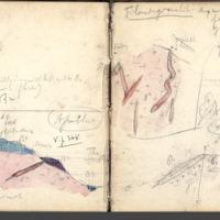 http://glangeaud.bu.uca.fr/archive/carnet-300/carnet-300_Page_35.jpg