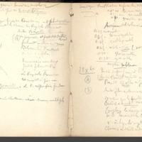 http://glangeaud.bu.uca.fr/archive/carnet-300/carnet-300_Page_12.jpg