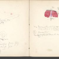 http://glangeaud.bu.uca.fr/archive/carnets/carnet-2400/carnet-2400_Page_14.jpg