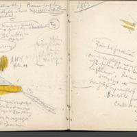http://glangeaud.bu.uca.fr/archive/carnet-2800/carnet-2800_Page_37.jpg