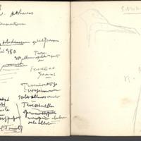 http://glangeaud.bu.uca.fr/archive/carnet-3800/carnet-3800_Page_32.jpg
