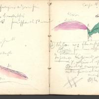 http://glangeaud.bu.uca.fr/archive/carnet-400/carnet-400_Page_22.jpg