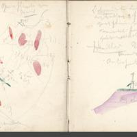 http://glangeaud.bu.uca.fr/archive/carnets/carnet-2200/carnet-2200_Page_18.jpg