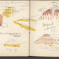 http://glangeaud.bu.uca.fr/archive/carnet-2800/carnet-2800_Page_41.jpg