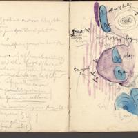 http://glangeaud.bu.uca.fr/archive/carnet-1900/carnet-1900_Page_06.jpg
