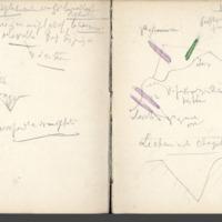 http://glangeaud.bu.uca.fr/archive/carnets/carnet-2400/carnet-2400_Page_43.jpg