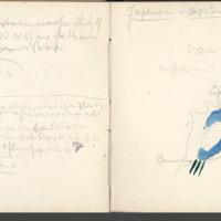 Carnets glangeaud, 2200, Livradois (ouest), 2206